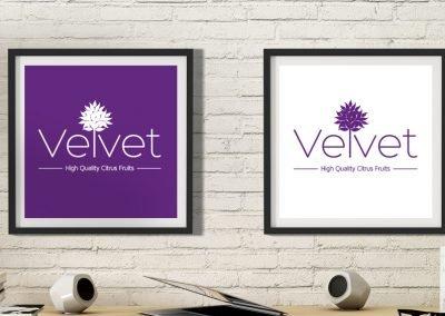 Velvet identidad corporativa
